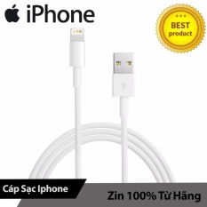Bán Cap Lightning Zin May Iphone 6S Plus 6S 6 6 Plus Cam Kết Zin May Trong Hồ Chí Minh