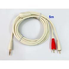 Dây cable loa 1 đầu 3.5 ra 2 AV dài 5m