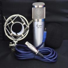 Mua Karaoke Online Với Bm 900 Ami Sieu Ấm Hat Như Phong Thu Hang Nhập Khẩu Ami Nguyên