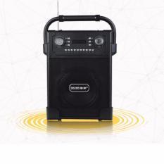 Mã Khuyến Mại Loa Bluetooth Hat Karaoke Kiem Trợ Giảng Xach Tay Đa Năng Tặng Mic Khong Day Daile S19 2018 Daile Mới Nhất