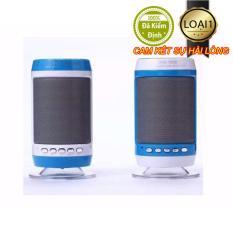 Hình ảnh Loa Bluetooth WS-887 Nititan loại 1