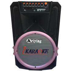 Ôn Tập Loa Keo Bluetooth Di Động Cao Cấp Loa Di Động Ariying B1201 Tặng 2 Micro