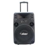 Bán Loa Keo Caliana Electronics T012 3 Tấc Đen Hong Kong Electronics Rẻ