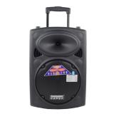 Mua Loa Keo Bluetooth Temeisheng Dp 107L 2 5 Tấc 2 Micro Temeisheng Nguyên