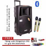 Giá Bán Loa Keo Bluetooth Temeisheng Sl 16 5Tấc 2 Micro Vang Tặng Usb Kingston 8Gb Rẻ Nhất