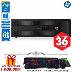Mua May Tinh Nguyen Bộ Hp Elitedesk 800 G1 Sff Core I7 4770 Ram 16Gb Ssd 256Gb Tặng Phim Cơ Chuột Game Lot Chuột