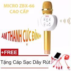 Micro Hat Karaoke Bluetooth Zbx 66 Thế Hệ Lọc Am Mới Nhất Gold Hang Nhập Khẩu Cap Sạc Day Rut 4 Đầu Oem Chiết Khấu 40