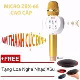 Bán Micro Hat Karaoke Bluetooth Zbx 66 Thế Hệ Lọc Am Mới Nhất Gold Hang Nhập Khẩu Loa Nghe Nhạc Bluetooth X6U Oem Người Bán Sỉ
