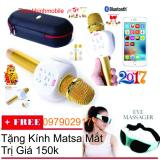 Bán Micro Kem Loa Karaoke Bluetooth Zbx 66 Oem Nguyên