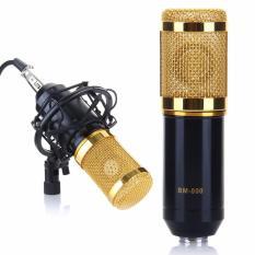 Mua Micro Hat Karaoke Online Sound Bm 800 Rẻ Trong Hồ Chí Minh