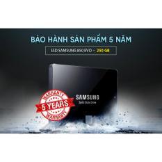 Mua Ổ Cứng Ssd Samsung 850 Evo Dung Lượng 250Gb Trực Tuyến Rẻ