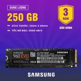 Mua Ổ Cứng Ssd Samsung 960 Evo Pcie Nvme M 2 250Gb Trực Tuyến Rẻ