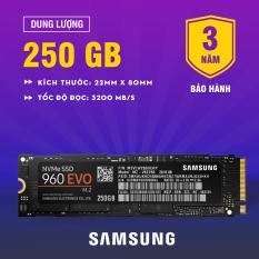 Chiết Khấu Sản Phẩm Ổ Cứng Ssd Samsung 960 Evo Pcie Nvme M 2 250Gb