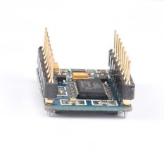 Professional SD Card MP3 Sound Audio Module for PIC - intl