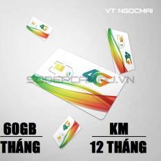 Chiết Khấu Sim 3G 4G Viettel V90 Km 60Gb Thang Gọi Miễn Phi Nội Mạng 50Phut Ngoại Mạng Viettel Cà Mau