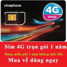 Hình ảnh SIM Vinaphone 4G Vina12T Tặng 5.5GB/Tháng Trọn Gói 1 Năm