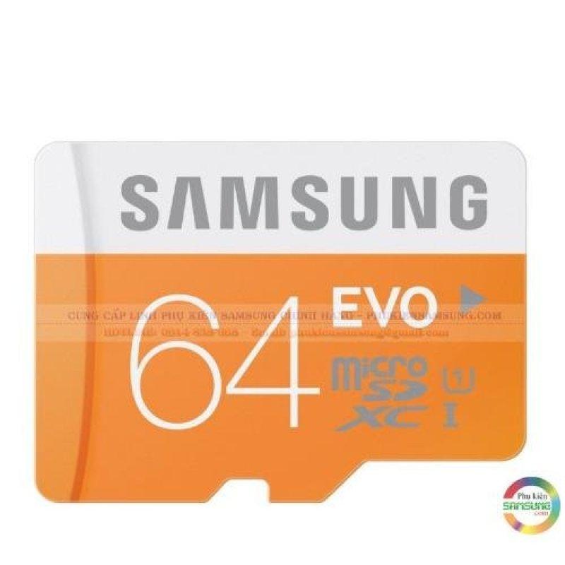 Thẻ nhớ Samsung Evo dung lượng 64GB tốc độ ghi/đọc 80Mb/s (Vàng) (Vàng 64GB)