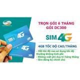 Bán Mua Thong Tin Chi Tiết Sim 4G Viettel Trọn Goi 6 Thang 4Gb Thang Goi Dc300 Mới Việt Nam
