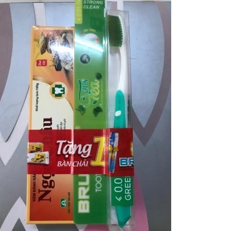 Combo 2 hộp Kem đánh răng dược liệu Ngọc Châu ( 100g x 2 ) tặng 1 bàn chải đánh răng giá 25k