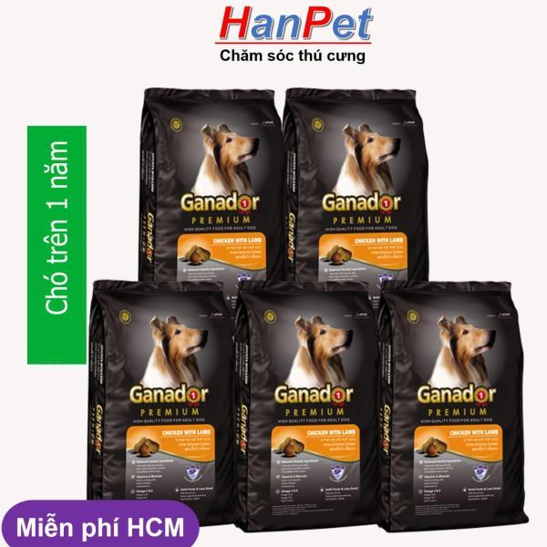 HCM -(Combo 5 gói) Thức ăn  dạng hạt GANADOR ADULT (dành cho chó trên 1 năm tuổi) gói 400gr (hanpet 209)-HP10305TC