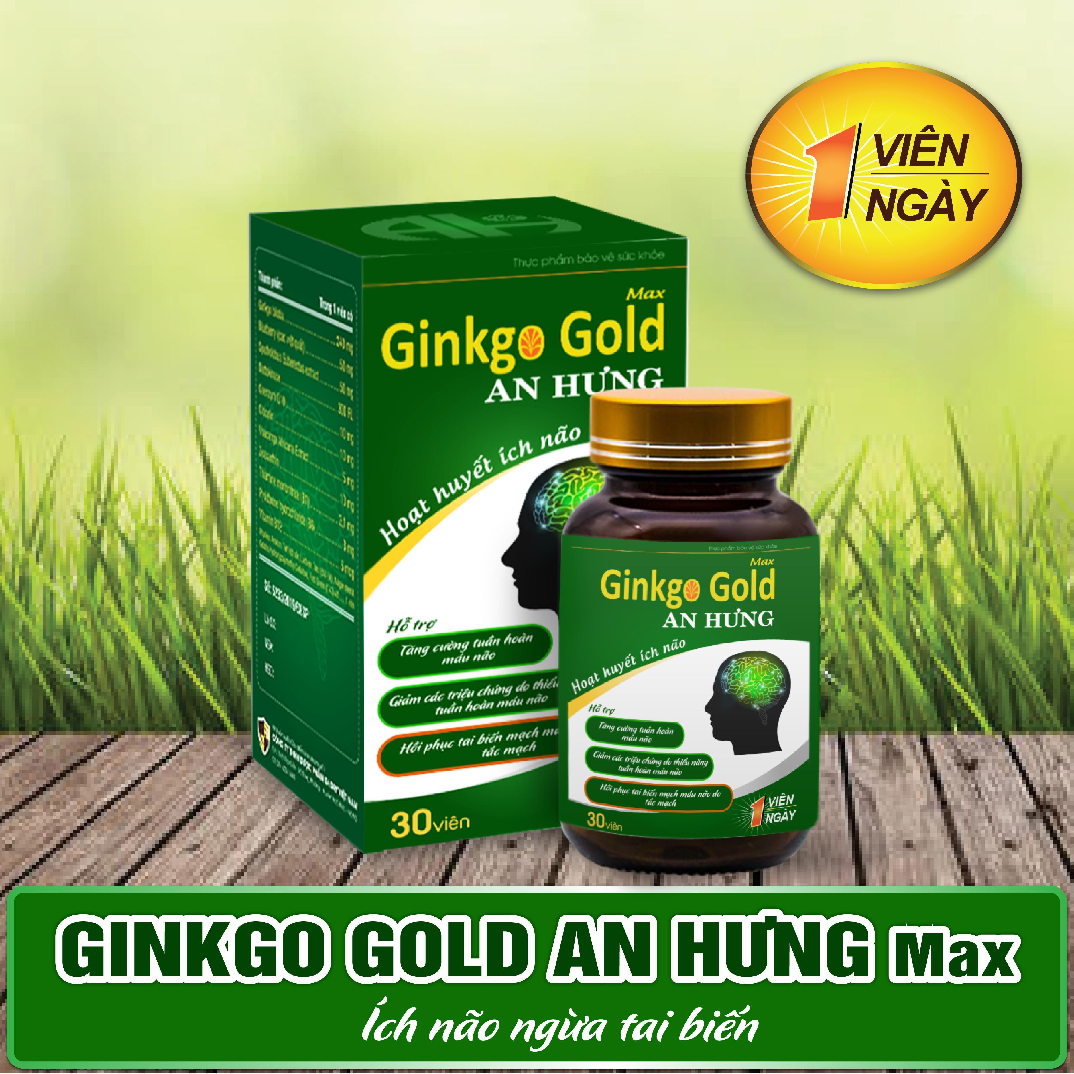 Thực phẩm bổ não Ginkgo Gold Max An Hưng cao cấp