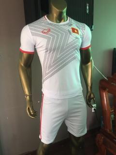 Bộ thể thao nam mẫu tuyển quốc gia Việt Nam thumbnail