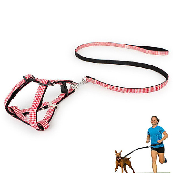 ( loại dày 2 lớp 1.0) Dây dắt chó mèo + dây yếm đai yên ngựa chắc chắn cho chó mèo từ 3-6kg( (màu ngẫu nhiên)