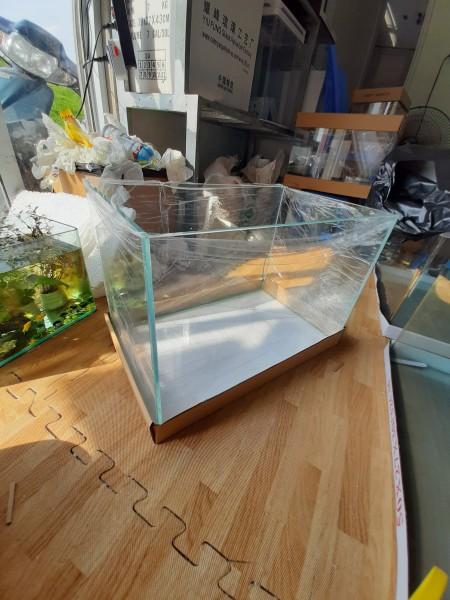 Bể cá mini kính dán siêu trong 45x28x30 cm kính 6mm