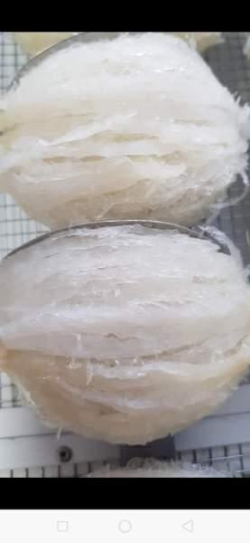 Yến tinh chế 100gr/ 1 hộp gồm 12 tổ đắp khuôn sấy khô, không tẩm đường, không pha tạp chất cao cấp