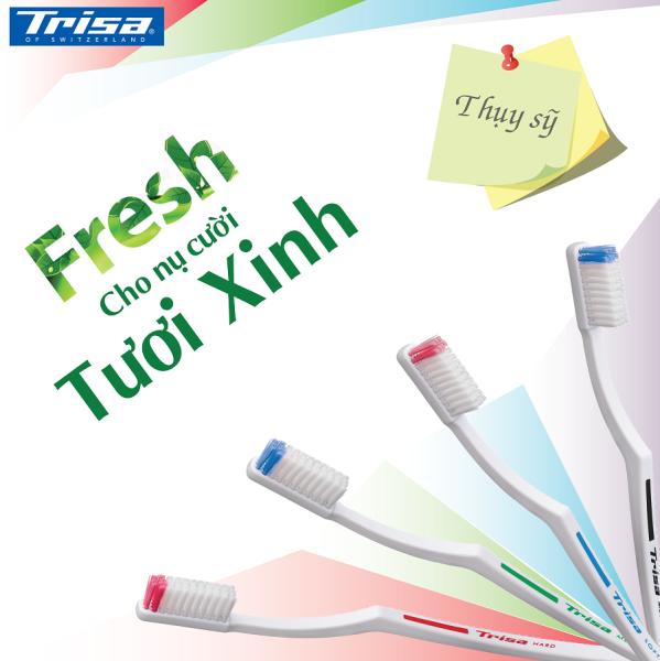 Bộ 4 Bàn Chải Đánh Răng Trisa Fresh Nhập Từ Thụy Sỹ ( Soft )