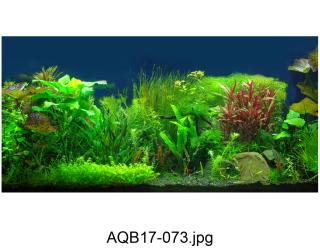 Tranh 3d Koifish - 100x45cm, cho hồ cá siêu nét, siêu đẹp, thumbnail
