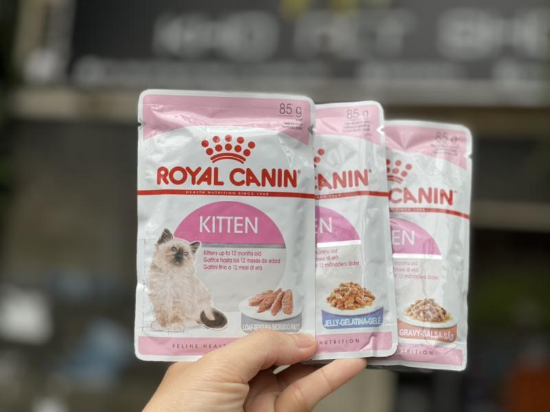 Pate Royal Canin cho mèo bé - Kitten