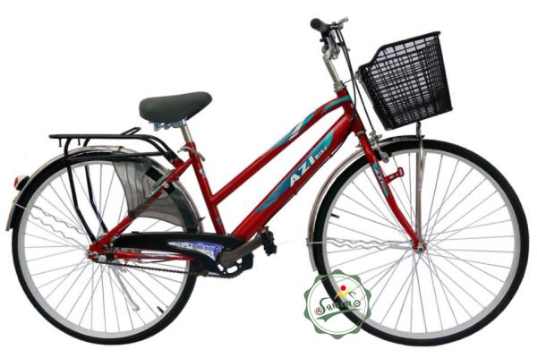 Phân phối Xe đạp AZI 27inch - Xe đạp cào dẹp