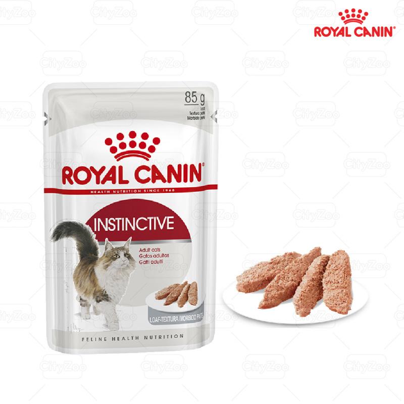 pate mèo trưởng thành gravy - loaf - jelly Royal canin - gravy