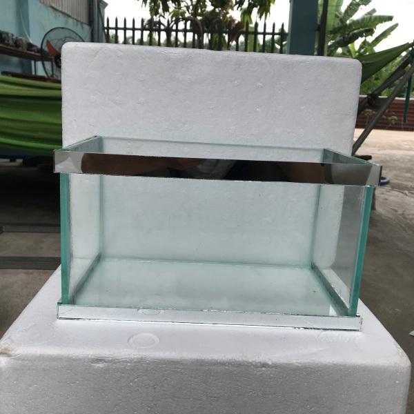 Bể cá 17x17x30 dán chỉ viền thuỷ