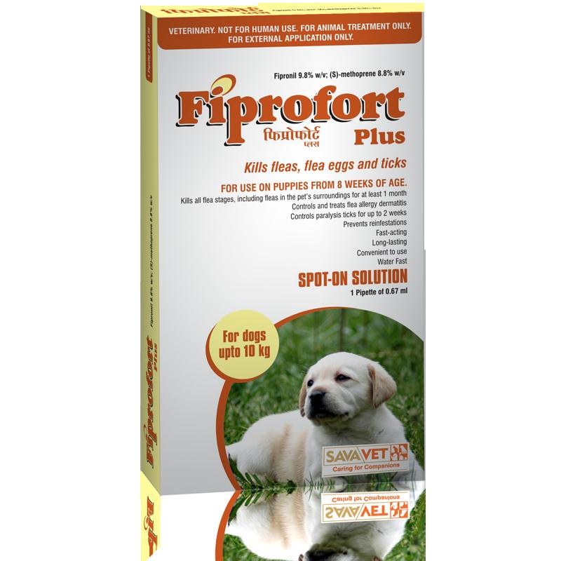 Nhỏ gáy Fiprofort Plus diệt ve, chấy rận cho chó (hộp 3 tuýp)