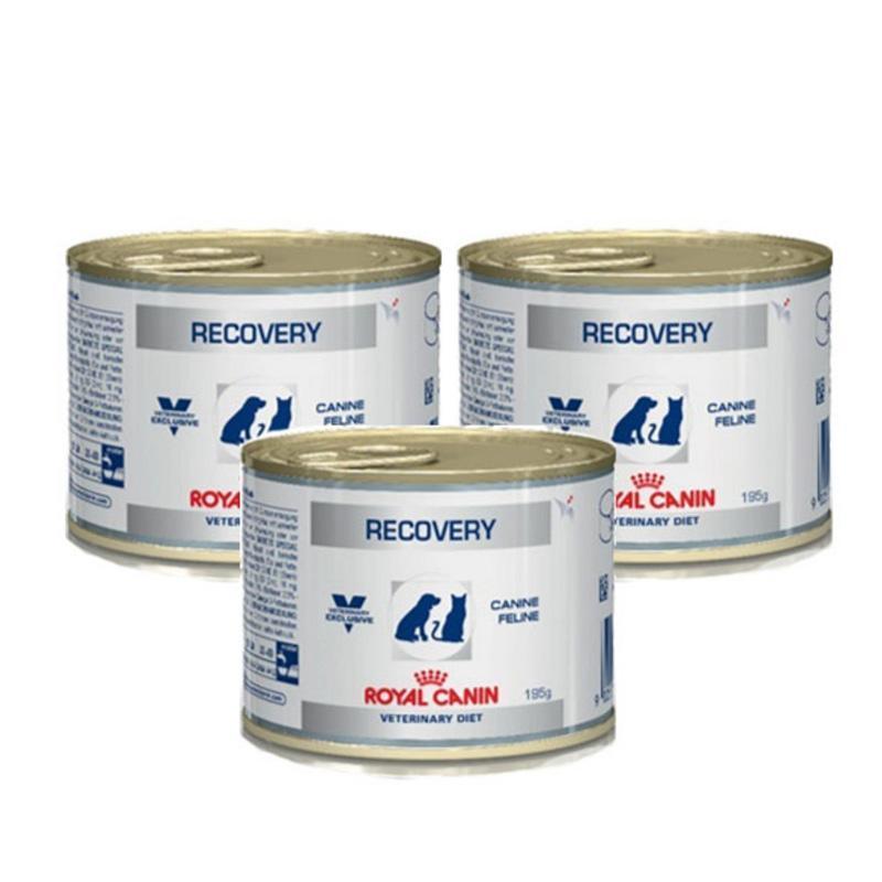 Thức ăn Pate cho chó mèo Royal canin Recovery 195g giúp phục hồi sức khỏe - Pate dinh dưỡng cho thú cưng phục hồi sức khỏe