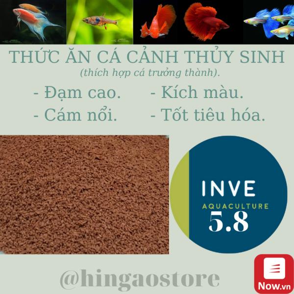 Cám Thái Inve 5/8 - 5.8 Túi 1KG - Thức ăn cá cảnh cao cấp NHẬP THÁI | Hingaostore.