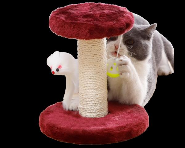 Trụ Cào Móng Có Đồ Chơi Cho Mèo - iPet Shop