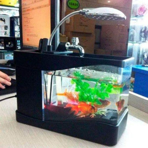 Bể cá mini kiêm đồng hồ để bàn - cực dễ thương
