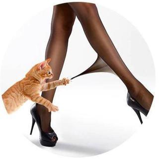 Quần tất quả dứa Quần tất da nữ Nikendo Chất liệu cao cấp co giãn tốt mềm mịn ôm chân bền màu không xù lông QT001 thumbnail