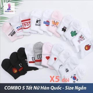 Combo 5 Đôi Vớ Tất Nữ Hàn Quốc HachaSocks - Size Ngắn Chat Để Chọn Mẫu (Kho HCM) thumbnail