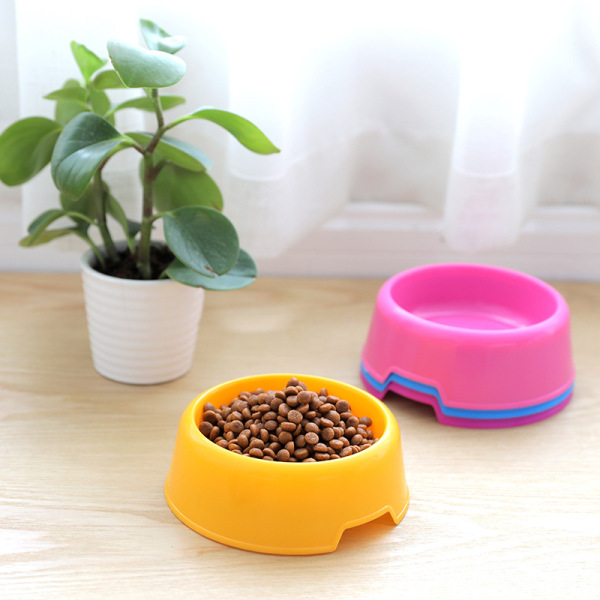Bát ăn đơn cho chó mèo đựng thức ăn, nước nhiều màu sắc