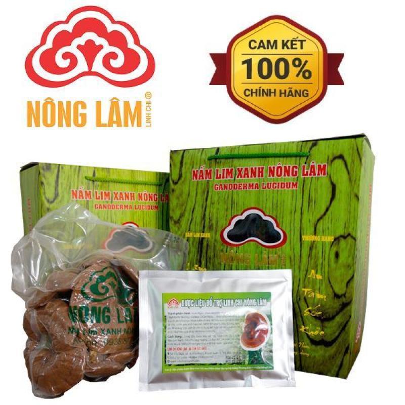 Nấm Lim Xanh Nông Lâm (Loại nguyên tai 500g) cao cấp
