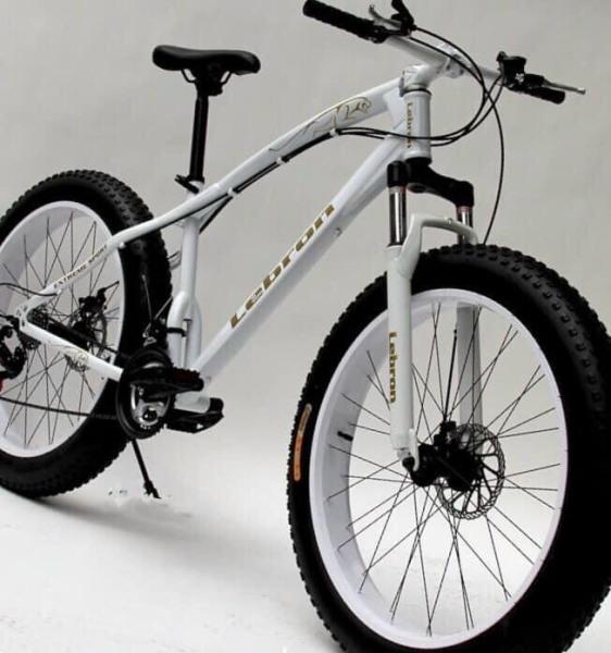 Mua Xe đạp thể thao bánh béo LEBRON - Xe đạp leo núi - Nhập khẩu đài loan - Bảo hành 12 tháNG