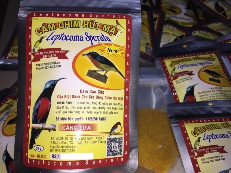 Cám chim hút mật CĂNG LỬA