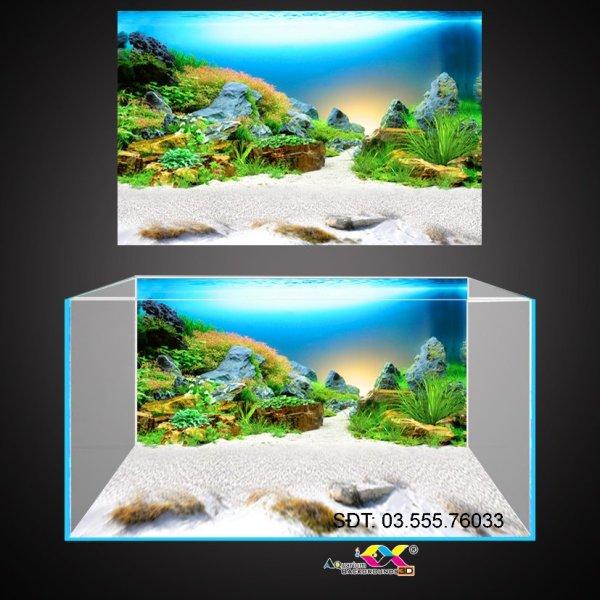 Tranh 3D dán hồ cá siêu đẹp, siêu nét, có keo sẵn trên bề mặt, in các kích thước theo yêu cầu (40-50-60-70-80-90-100-120-150-180...)