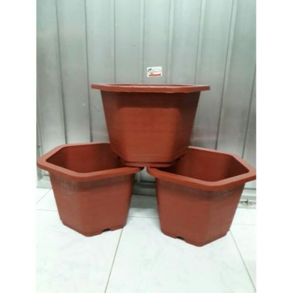 10 Chậu nhựa cỡ lớn trồng cây 30×20cm