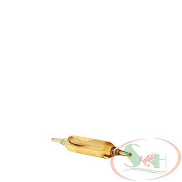 Vi Sinh Sống Xử Lý Nước Prodibio Biodigest - Lẻ 1 ống