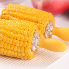 10Pcs Forks Skewers Prongs Jumbo Corn on the Cob Holders For BBQ Barbecue - intl